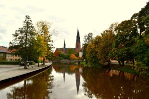 Fall in Uppsala, a gorgeous scene of the changing leaves on the trees