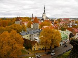 Beautiful colors of changing leaves in Tallinn, Estonia