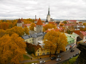 Beautiful colors of changing leaves in Tallinn, Estonia