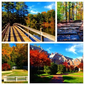 The University of Richmond, my home university