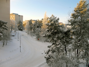 View from my window: Snowy Uppsala, the remnants of an incredible snowstorm