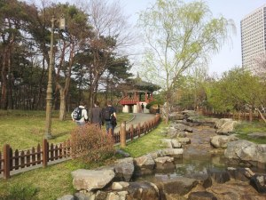 Beautiful Yeouido Park, where we went to enjoy the Cherry Blossoms