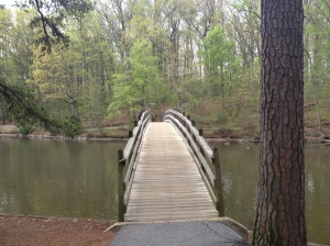Perfect scenery from the bridge on Westhampton Lake at the University of Richmond