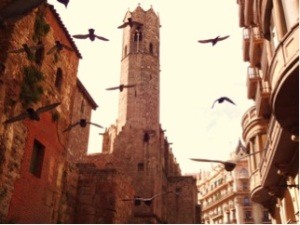 Managed to capture this image of the birds while in the oldest parts of the Barcelona. Completely fits my image of the stereotypical European image