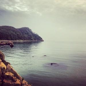 Beach in Busan
