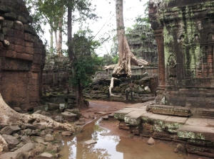 Ta Prohm temple, Tomb Raider