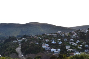 dunedin from bot gards (2)