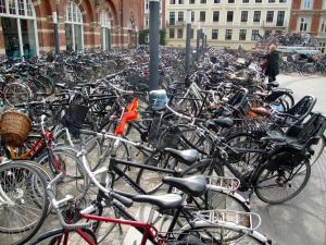Hopefully this will give you an idea of what I'm talking about. So. Many. Bikes.
