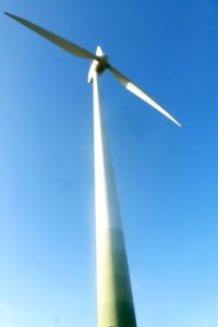 Wistful for wind turbines