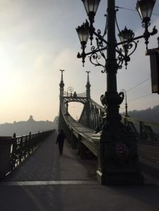 a picture of the chain bridge that connects the Buda and the Pest sides of Budapest.