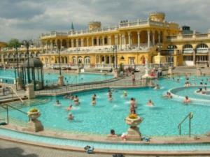 """The Szechnyi Baths in the Center Park"""""""