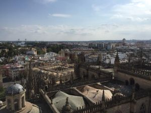 A picture from the tower of the Cathedral