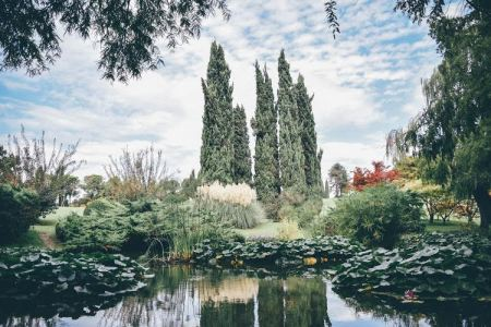 Italian gardens are delicately designed and carefully maintained. Unlike the rustic feel of English gardens, this northern Italian garden is incredibly elegant and polished. Every detail of the pond and forest hills show the efforts of human touch.