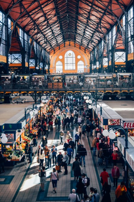 The Budapest Market Hall