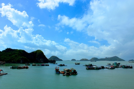 After taking the night train back to Hanoi and parting ways with my friends, I made my way to Halong Bay. I opted out of the notorious booze cruises and stayed on the island of Cat Ba, located a little further into the Bay.