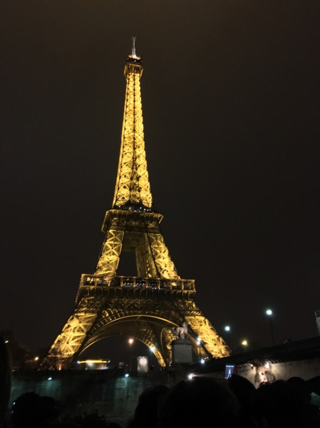 I may have already seen the Eiffel Tower, but that wouldn't discourage me from seeing it in a different light...nighttime to be exact. My friends and I went to an event on a boat organized by the local Erasmus student exchange network that included a tour of the Seine.
