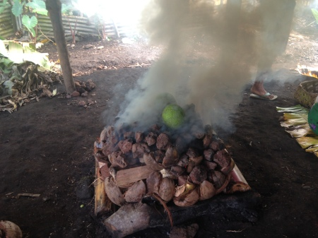 "Breadfruit cooks on the umu. Right insert ""octopus"" caption: beating the octopus"