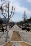 Pathway to Sinchon